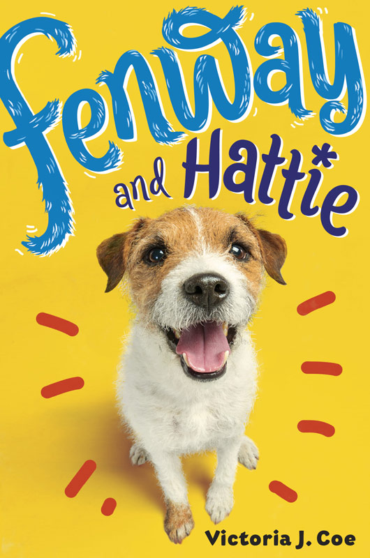 Fenway And Hattie -Book